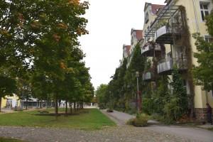 Lorettoplatz, Herbst 2015